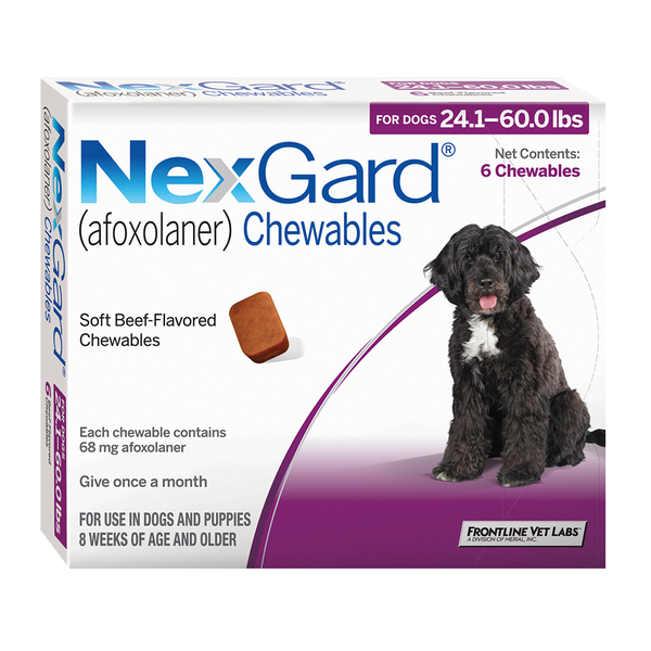 NexGard® Chewables for Dogs Purple 24.1 - 60lbs 6pk